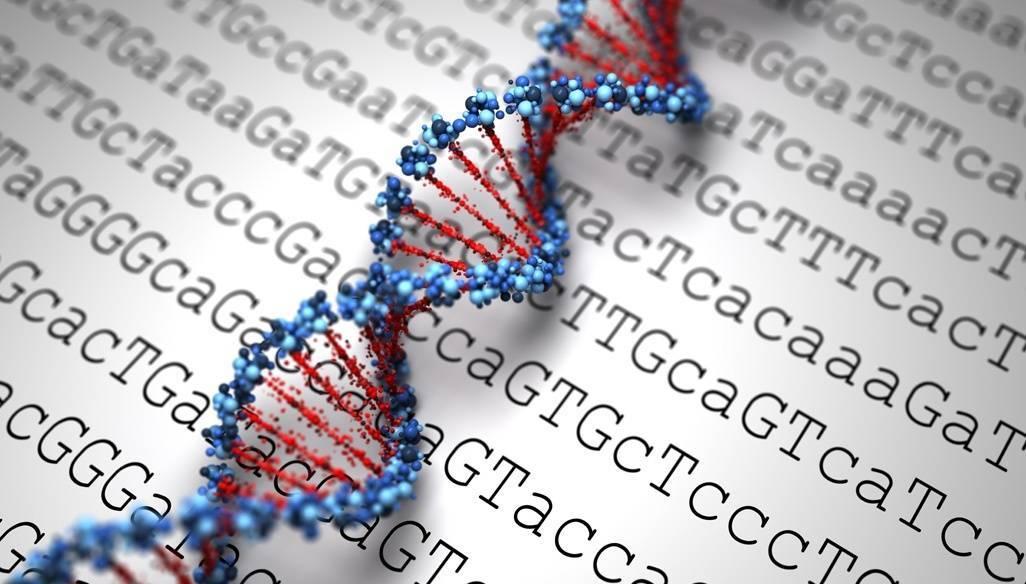 JScreen genes jewish genetic testing emory university